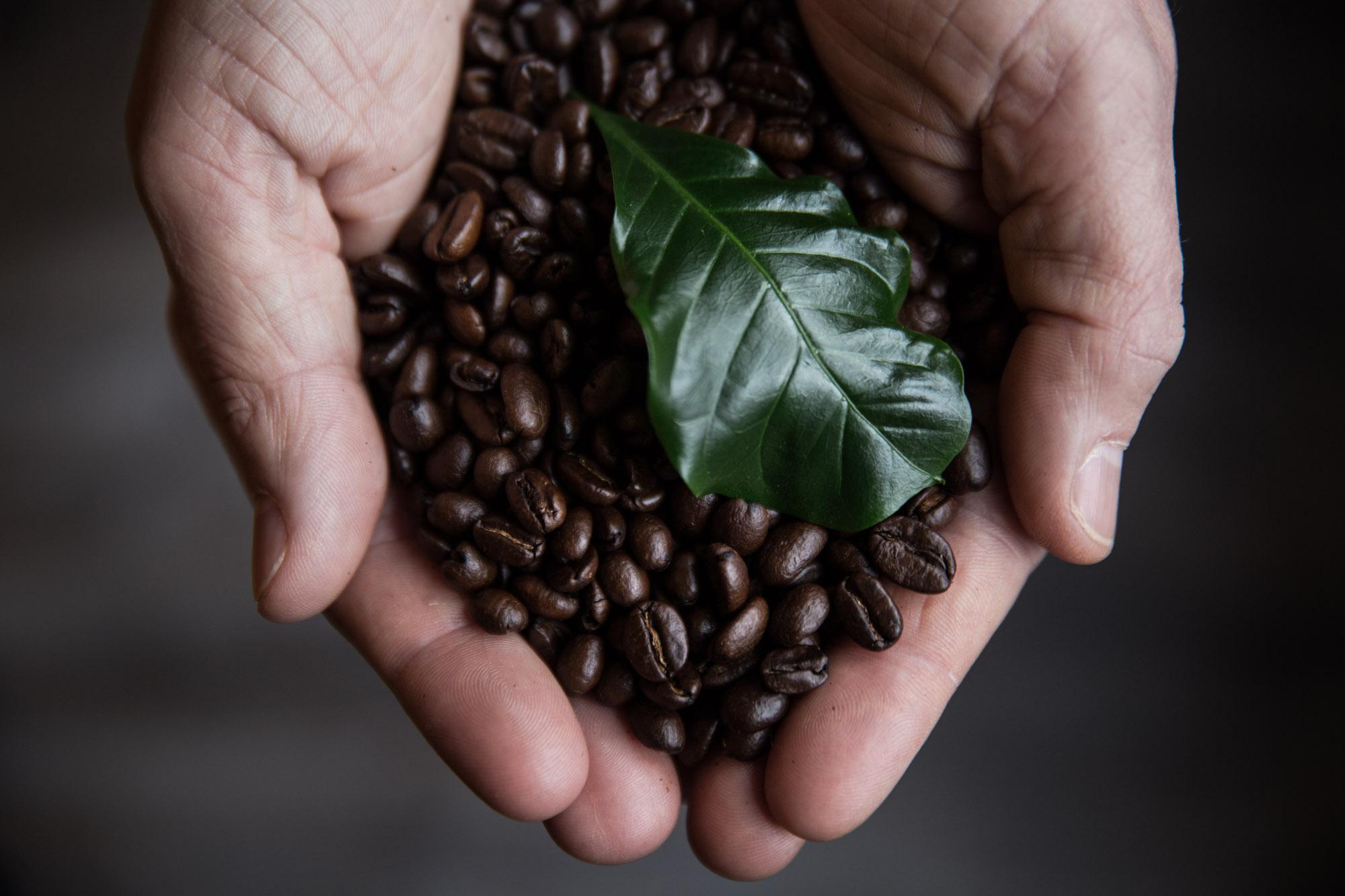 Så väljer du de bästa kaffebönorna till din espressomaskin