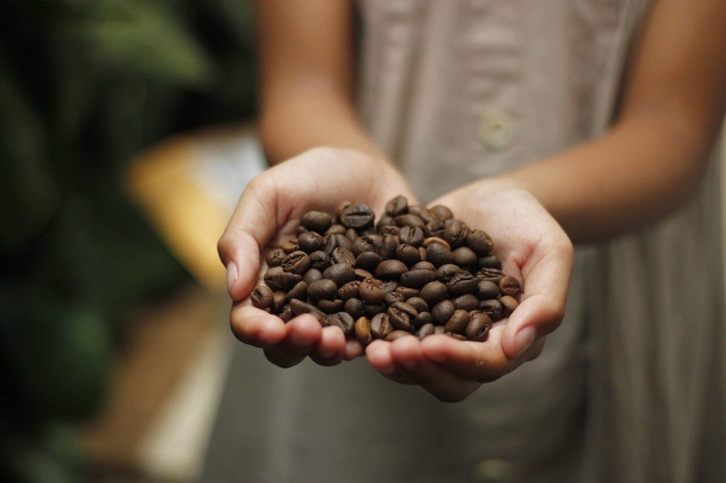 Kaffebönor - sorter