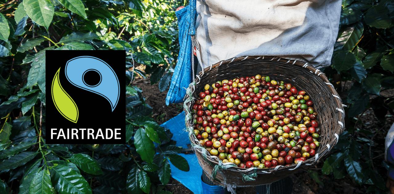 Vad är Fairtrade kaffe? Vi reder ut alla frågetecken