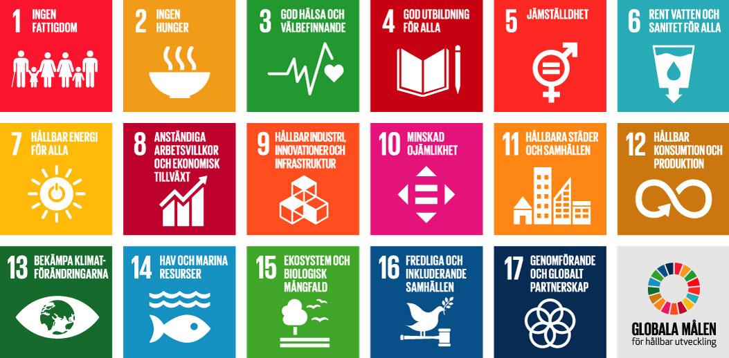 5 år sedan Globala målen antogs
