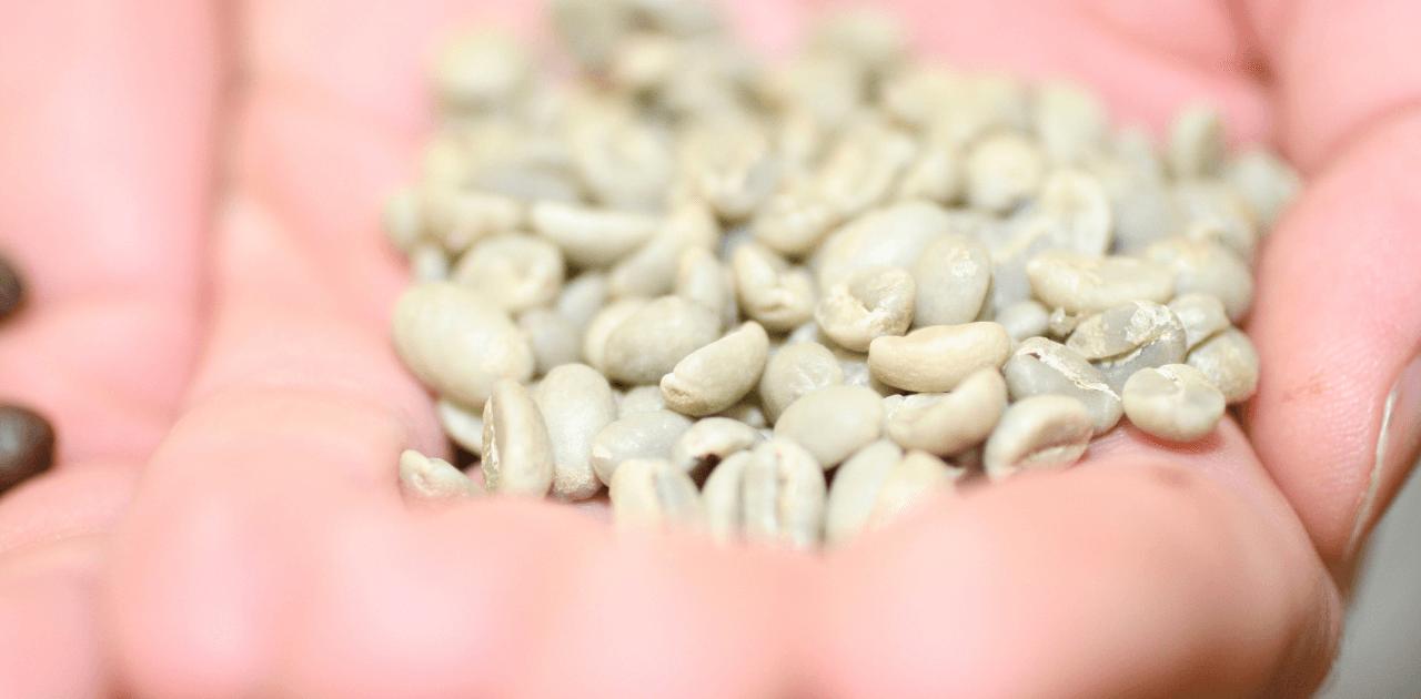 Allt du vill veta om orostade kaffebönor